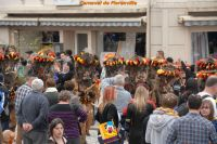 Carnaval_2014_00264