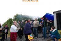 Carnaval201500030